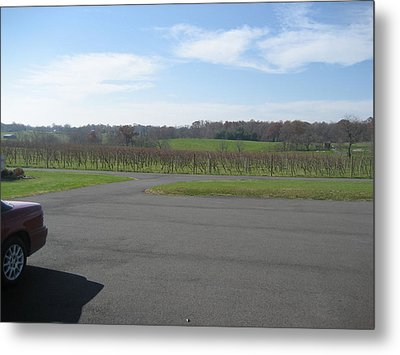 Vineyards In Va - 121230 Metal Print by DC Photographer