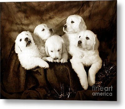 Vintage Festive Puppies Metal Print by Angel  Tarantella