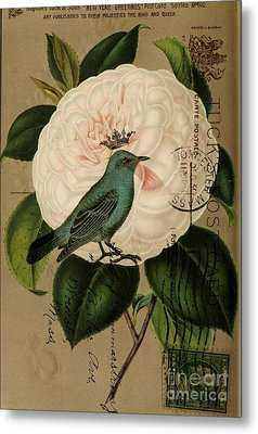 Vintage French Botanical Art Pink Rose Teal Bird Metal Print by Cranberry Sky