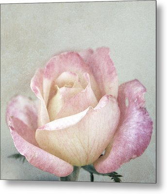 Vintage Rose In Pink And Robin's Egg Blue Metal Print by Brooke Ryan