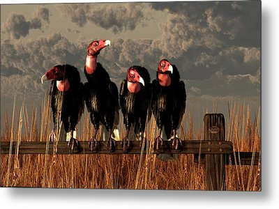 Vultures On A Fence Metal Print by Daniel Eskridge