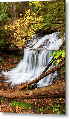 Wagner Falls In Autumn Metal Print by Craig Sterken
