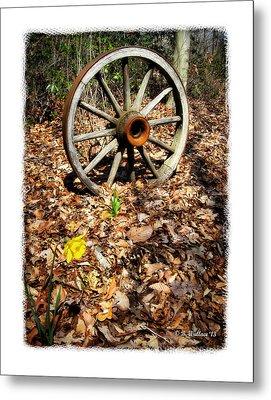 Wagon Wheel Daffodil Metal Print by Brian Wallace