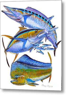 Wahoo Tuna Dolphin Metal Print by Carey Chen
