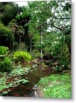 Waimea Valley In The North Shore Of Oahu Hawaii Metal Print by Jim Fitzpatrick