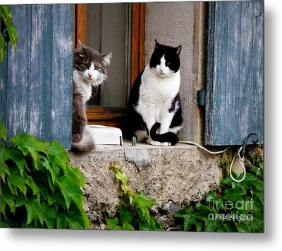 Waiting For Dinner Metal Print by Lainie Wrightson