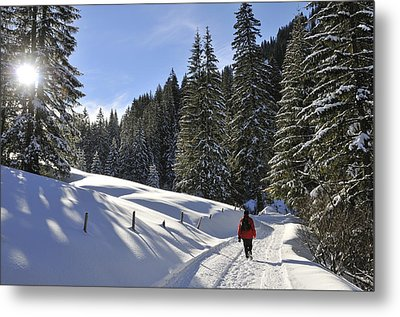 Walk In Sunny Winter Landscape Metal Print by Matthias Hauser