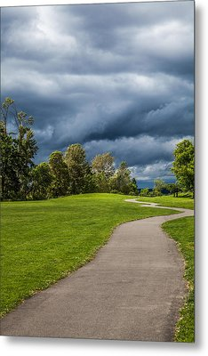 Walk In The Park Metal Print by Tommy Farnsworth
