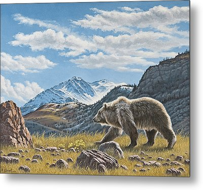 Walking The Ridge - Grizzly Metal Print by Paul Krapf