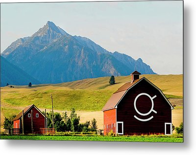 Wallowa Mountains And Red Barn In Field Metal Print by Nik Wheeler