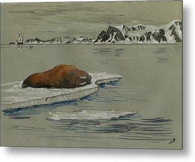 Walrus On The Iceberg Metal Print by Juan  Bosco