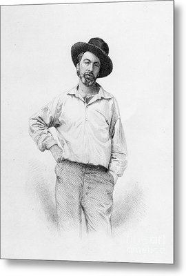Walt Whitman Frontispiece To Leaves Of Grass Metal Print by American School