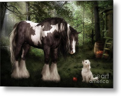 Want To Play Metal Print by Shanina Conway