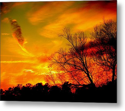 Warm Winter Sunset  Metal Print by Walter  Holland