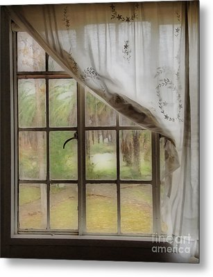 Watching The Rain Metal Print by Cheryl Young