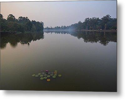 Water Lilies At Dawn Metal Print by Bill Mock