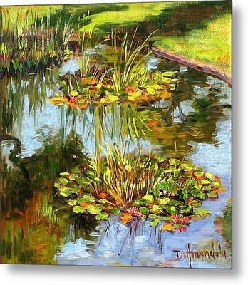 water lilies in California Metal Print by Dominique Amendola