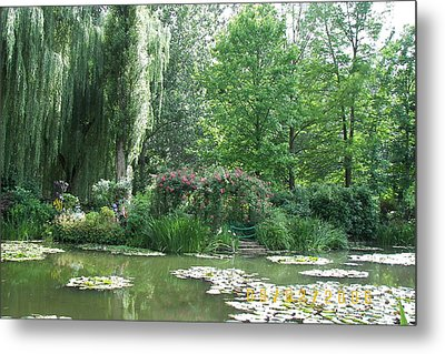Water Lilies Metal Print by James Dolan