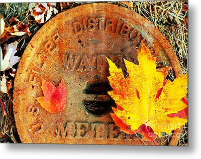 Water Meter Cover With Autumn Leaves Abstract Metal Print by Andee Design