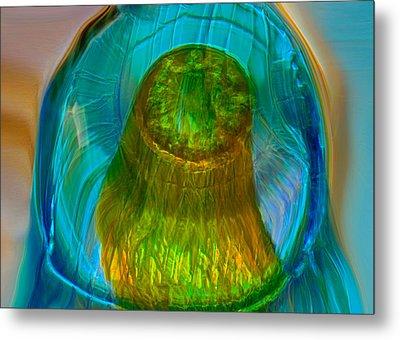 Water Realm Metal Print by Omaste Witkowski