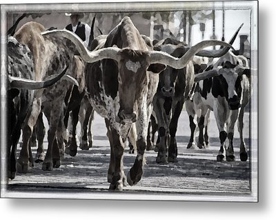 Watercolor Longhorns Metal Print by Joan Carroll