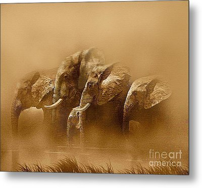 Watering Hole Metal Print by Robert Foster