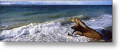 Waves And Driftwood On The Beach Metal Print by Panoramic Images