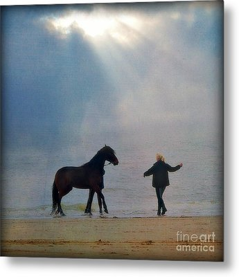 We Go Together Like A Horse And Carriage Metal Print by Lisa Van der Plas
