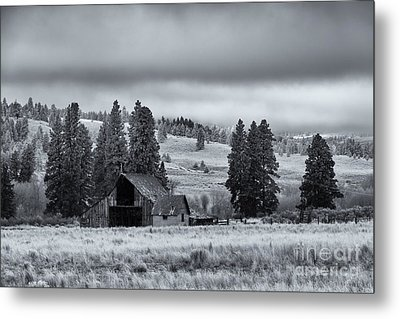 Weathered Beneath The Storm Metal Print by Mike  Dawson