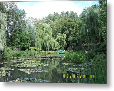 Weeping Willows Metal Print by James Dolan