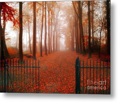 Welcome Metal Print by Jacky Gerritsen