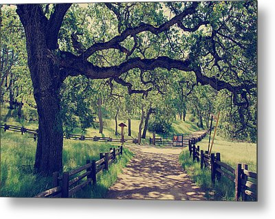 Welcoming Metal Print by Laurie Search