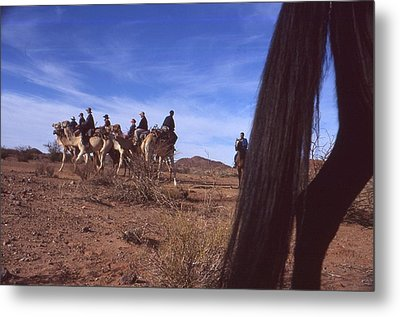 Western Cape Desert South Africa 1996 Metal Print by Rolf Ashby