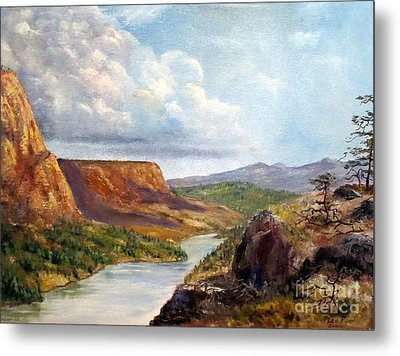 Western River Canyon Metal Print by Lee Piper