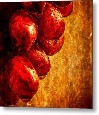 Wet Grapes Three Metal Print by Bob Orsillo