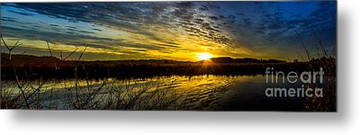 Wetlands Sunset Metal Print by Michael Cross