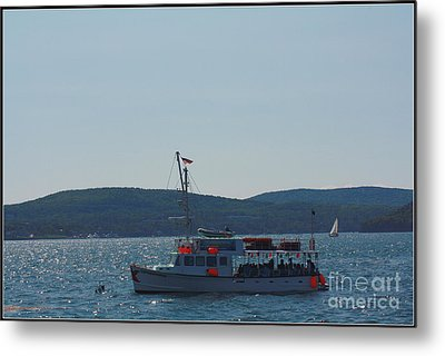 Whale Watching At Bar Harbor Metal Print by Dora Sofia Caputo Photographic Art and Design