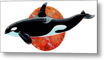 Whale Watching Metal Print by David  Chapple