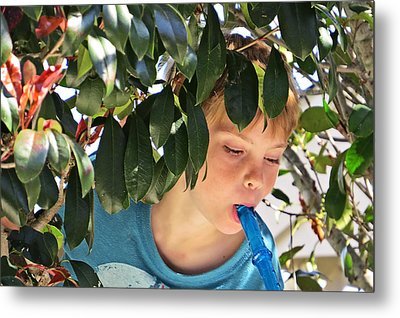 What Boys Are Made Of - Trees And Music Metal Print by Ella Kaye Dickey