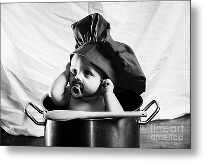 What's For Dinner  Metal Print by Anthony Ruselowski