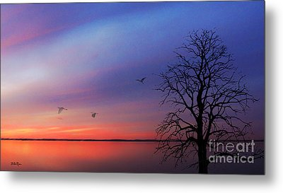 When Day Kisses Night Metal Print by Betty LaRue