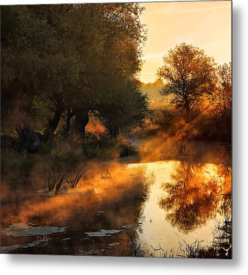 When Nature Paints With Light Metal Print by Jimbi