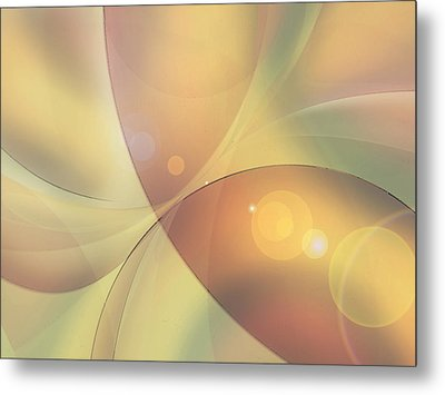 When Small Worlds Collide Metal Print by Ginny Schmidt