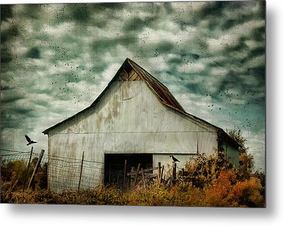 Where The Crows Roost In Autumn Metal Print by Jai Johnson