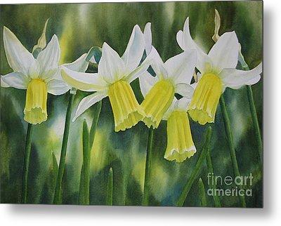 White And Yellow Daffodils Metal Print by Sharon Freeman