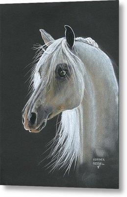 White Arabian Metal Print by Heather Gessell