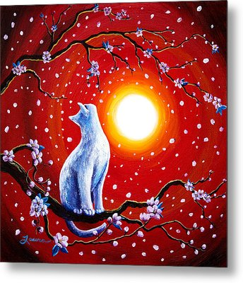 White Cat In Bright Sunset Metal Print by Laura Iverson