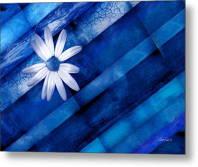 White Daisy On Blue Two Metal Print by Ann Powell