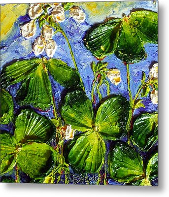 White Flowers Shamrocks Metal Print by Paris Wyatt Llanso