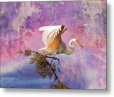 White Lake Swamp Egret Metal Print by J Larry Walker